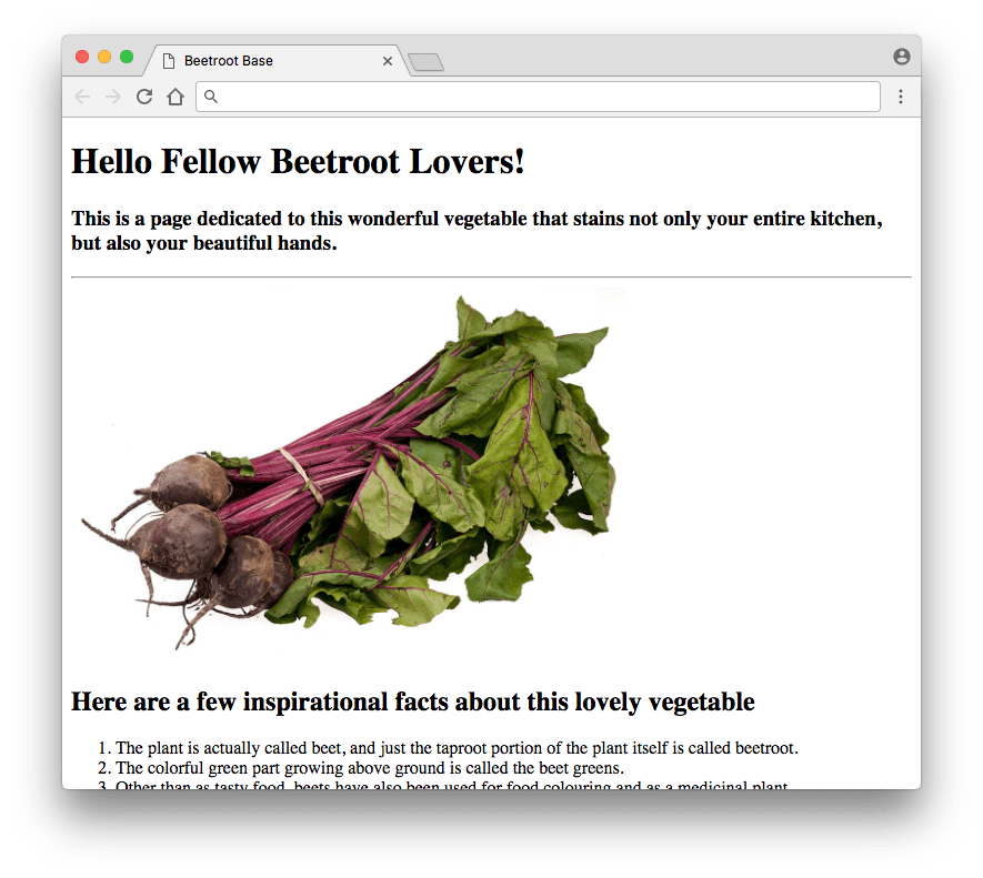 Beetroot Base HTML Page