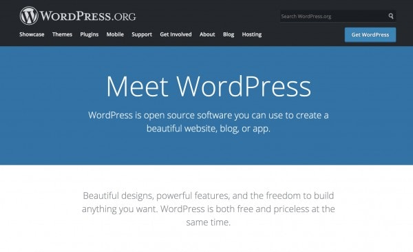 WordPress - The best CMS for blogging and web development